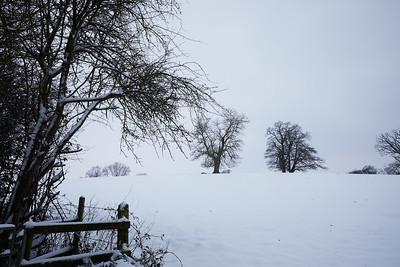 Snow Mar18 08