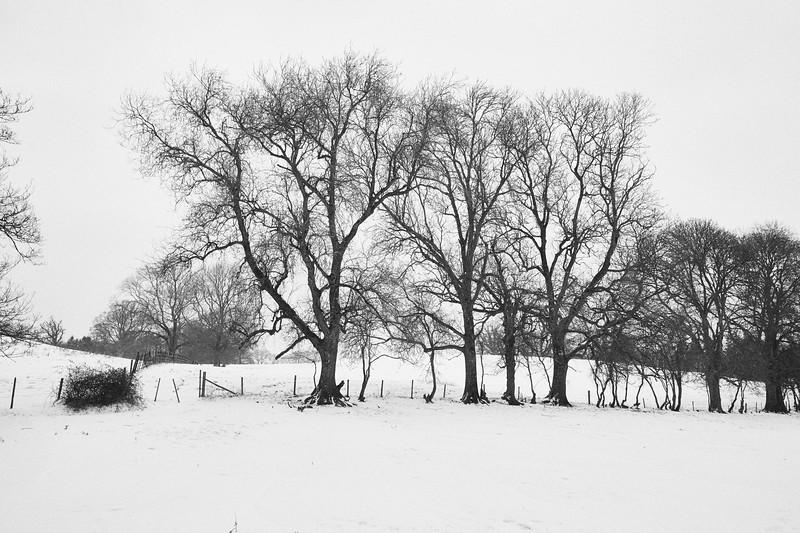 Snow Mar18 01