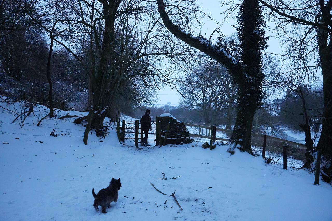Snow Mar18 28