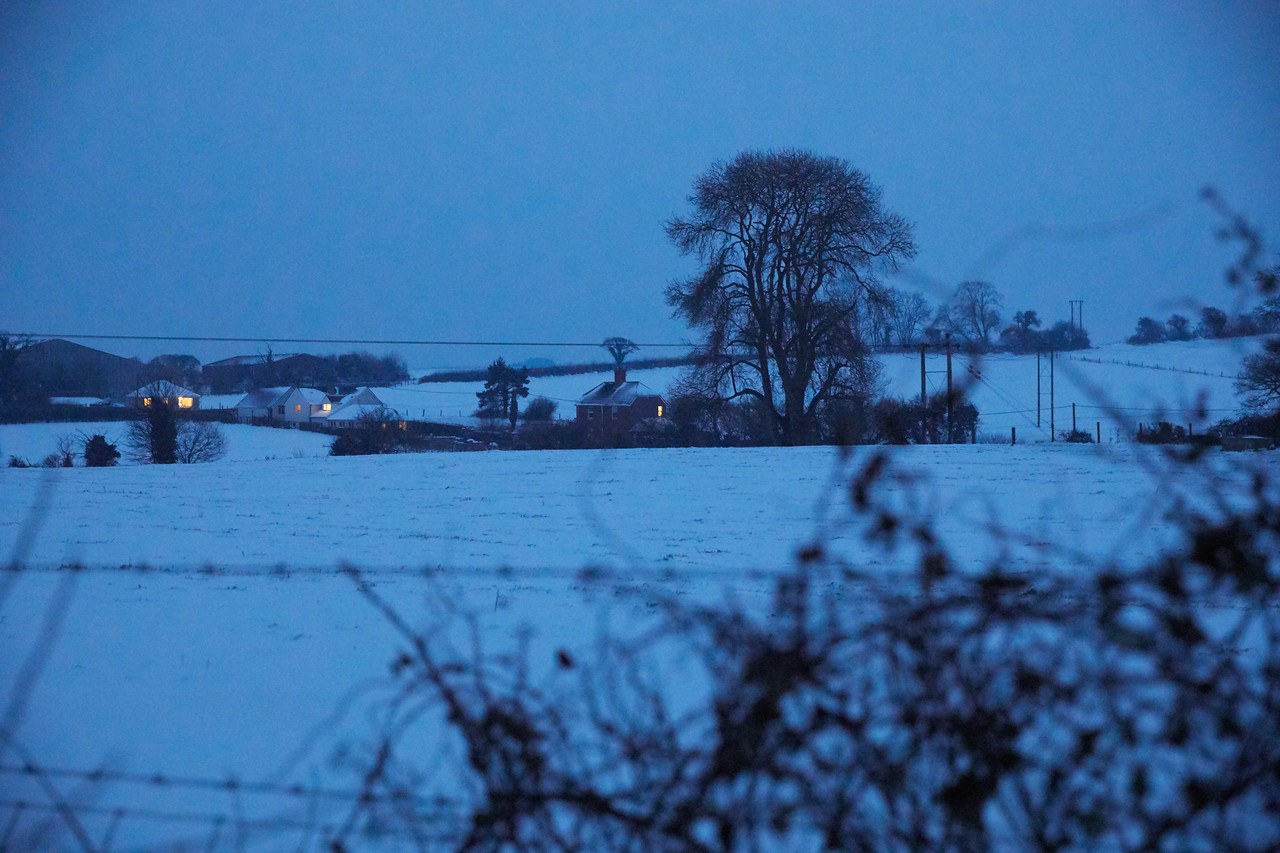 Snow Mar18 34