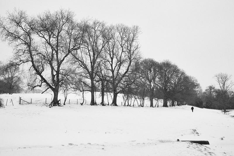 Snow Mar18 03