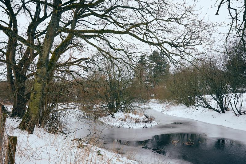 Snow Mar18 14