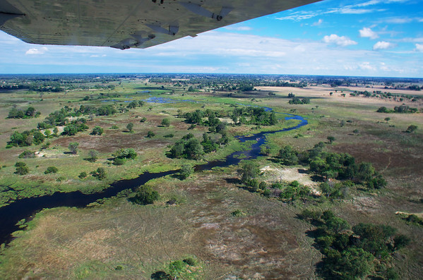 Aerial Okavango View