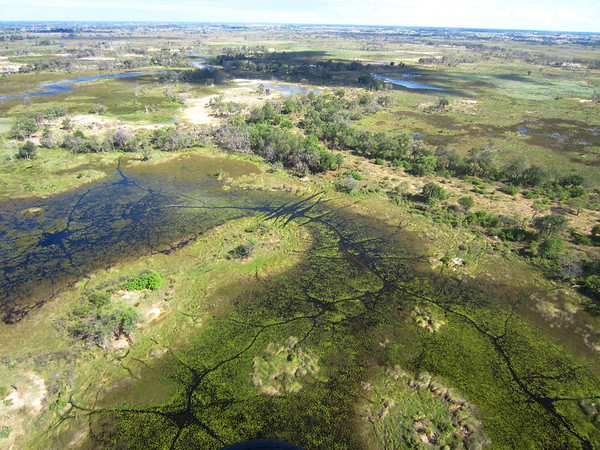 Botswana - Okavango Delta Aerial View