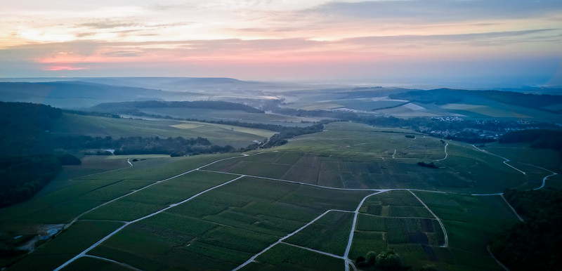 Mutigny Vineyards From Above 2