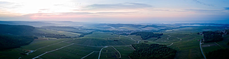 Mutigny Vines From Above 1