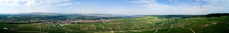 Epernay Vines Aerial View