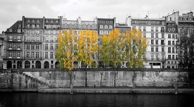 Quai de Seine Automne 1