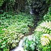 Small Falls of Akaka
