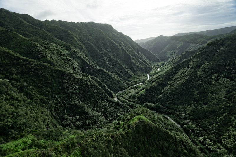 Valley of the Lost World