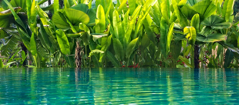 Uma Ubud Pool 2