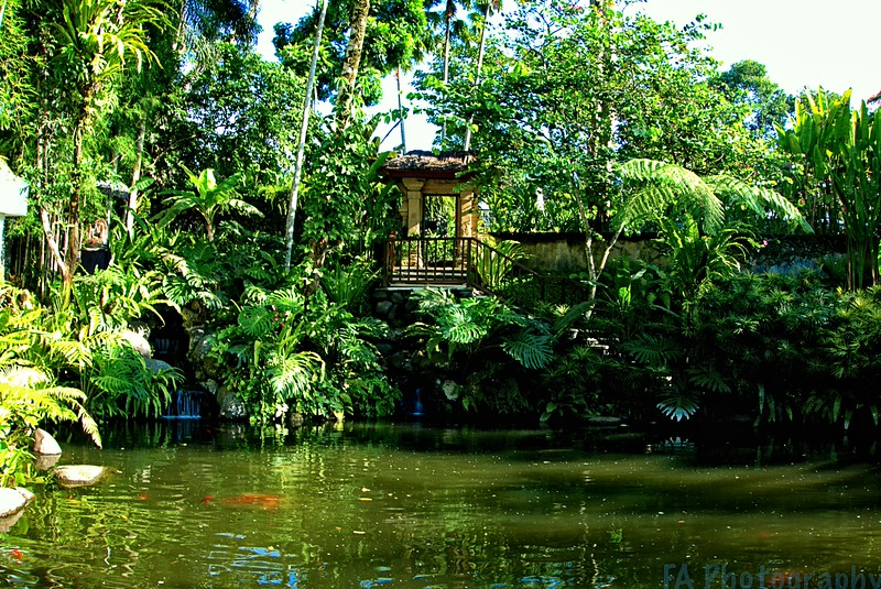 Bali - Uma Ubud Pond