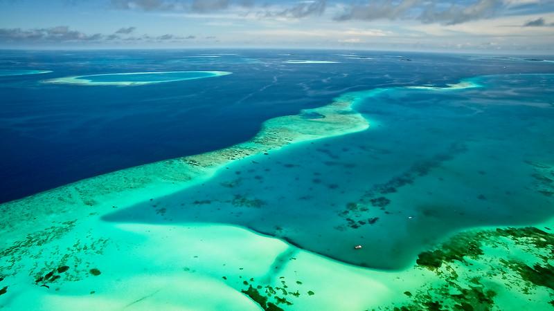 Reef Aerial