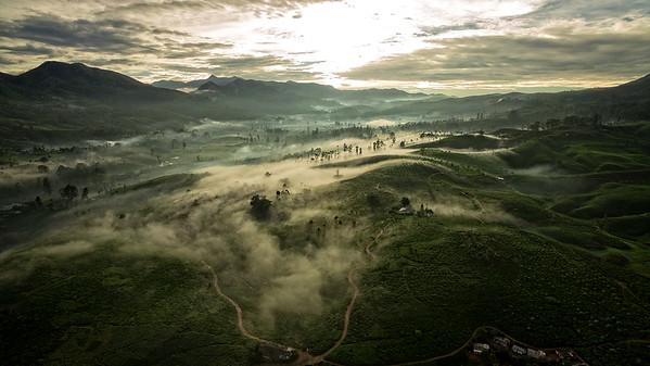 Ceylon Tea Trails Valley  Sunrise