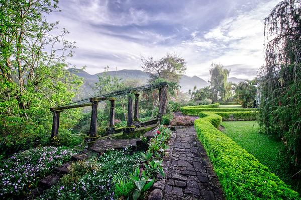 Tientsin Garden