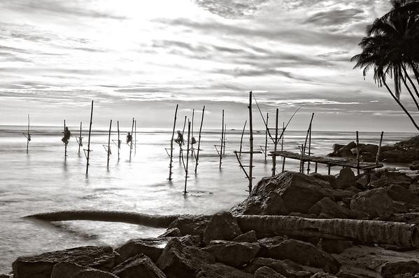 Koggala Stilt Fishermen B&W