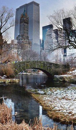 View of 5th & Park from the Pond in Central Park