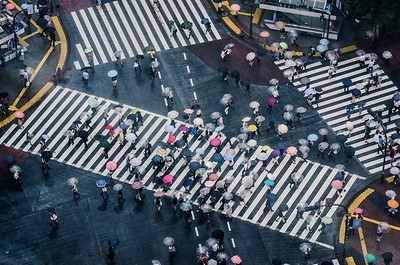 People With Umbrellas At Shibuya Crossing On A Rainy Day