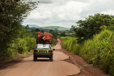 Forest Region, Guinea. 2 October, 2014.