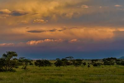 Sunrise on the Serengeti