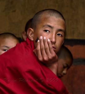 Young monk, Bhutan