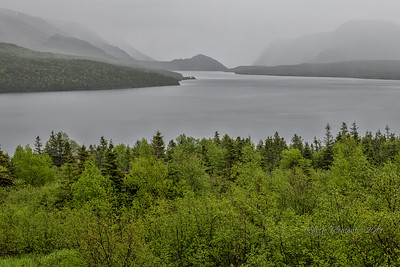 Trout River, Gros Morne