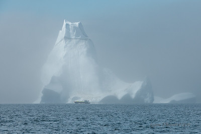 Iceberg and tour boat