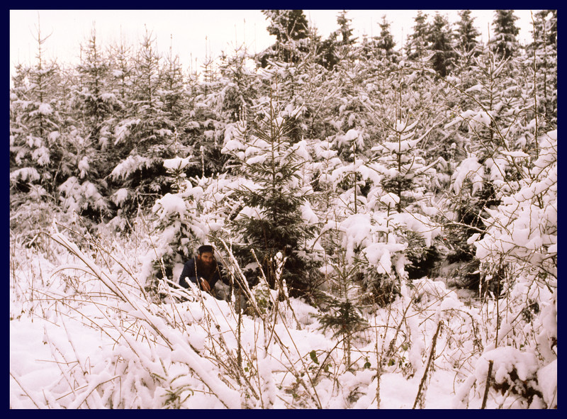 JimRob in a snowy forest cutting down our 1981 Christmas Tree.