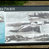 """Another Alfred Packer Sign - """"You man eating son of a ... There was seven Democrats in Hinsdale County and you ate five of them."""""""
