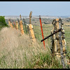 Limestone Fence Posts