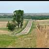Limestone fence posts along a rural Kansas road through rolling hills.