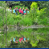 Visitors Reflections in the Beaver Pond