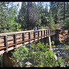 IM on footbridge over Burney Creek on the falls loop trail