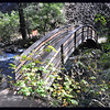 Footbridge over Burney Creek on Falls Creek Loop Trail.