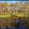 One of the ponds at the campground.