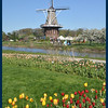 An original old windmill shipped to Holland, Michigan from the ORIGINAL Holland.