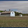 White barns.