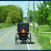 Windshield shot of Amish Buggy Phay was trying to manuever around.