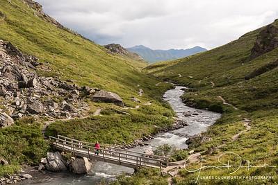 Savage Trail, Denali National Park