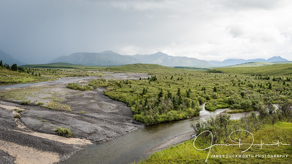 Savage River, Denali National Park