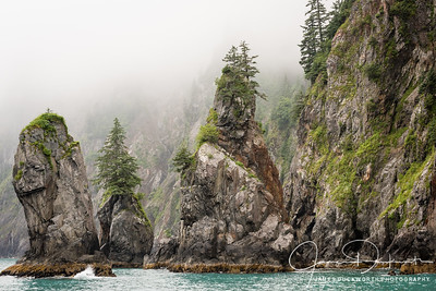 The Coast near Seward, Alaska