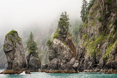 The Coast near Seward, Alaska