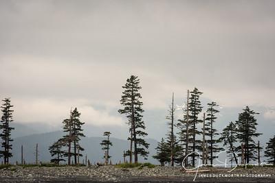 The Spit, Seward, Alaska