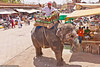 Finding your luck at the market square<br /> At the Sardar market in Jodhpur a mahut (elephant handler) directs his animal to sweep the stalls. As Ganesh (the god depicted as an elephant) stands for luck many people will offer a money donation which the  elephant will graciously accept and hand over to the mahut with his trunk.