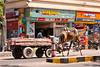 All sorts of transportation will be seen on Jodhpur's streets.