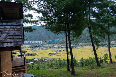 The Paro valley and its rice paddies