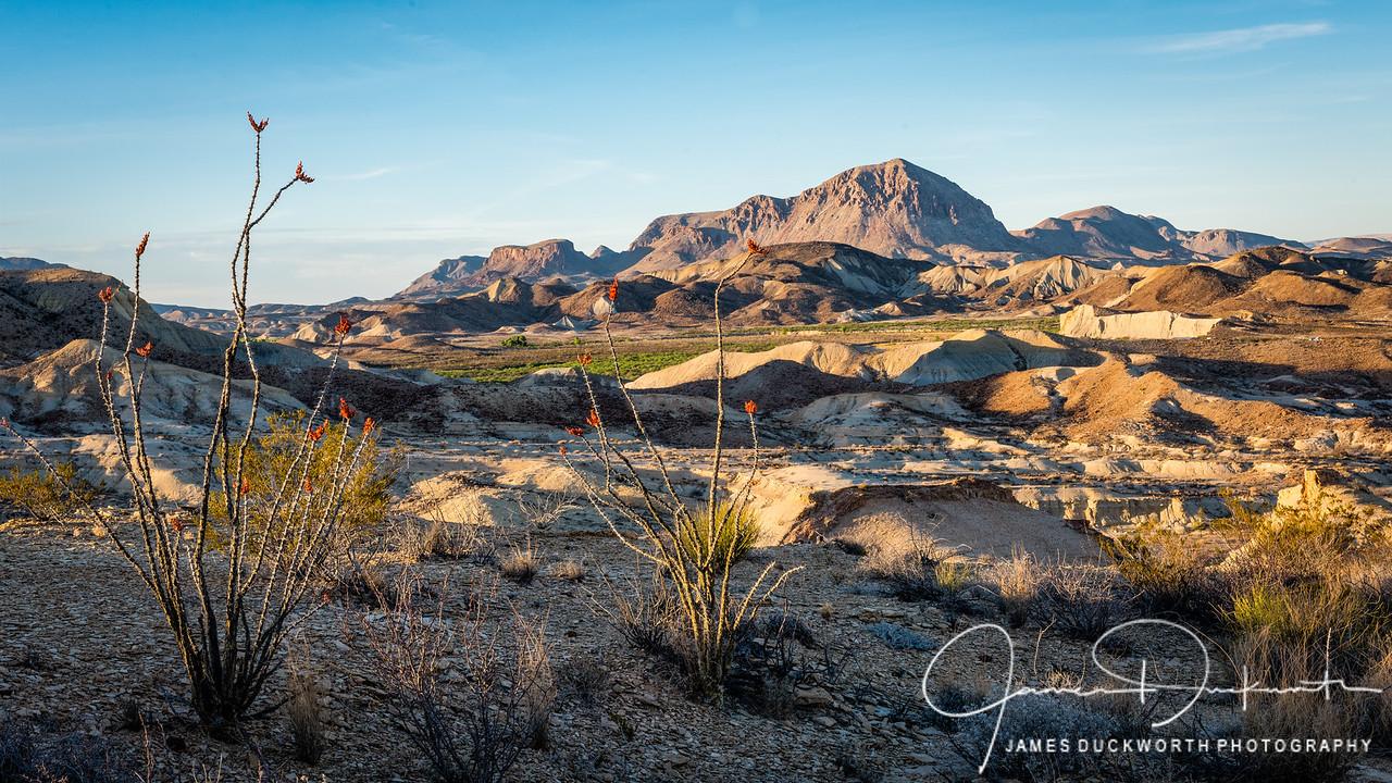 Terlinqua Desert Scene