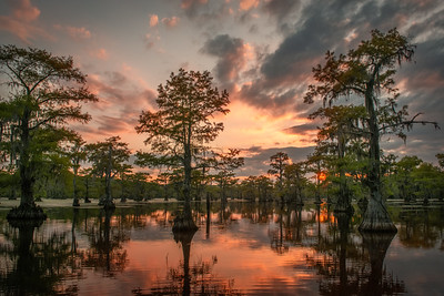 Caddo Lake Sunset