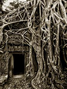 Ta Prohm Temple, Siem Reap, Cambodia - 2015