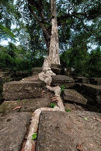 Near Thomanon Temple, Siem Reap, Cambodia - 2015